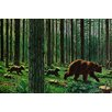Marmont Hill Bear Walk Graphic Art Wrapped on Canvas