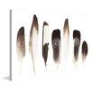 Marmont Hill Gerahmter Kunstdruck Dark Feathers in the Light von Marmont Hill