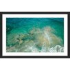 Marmont Hill Clear Water by Karolis Janulis Framed Photographic Print