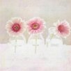 Marmont Hill '3 Daisies' by Sylvia Cook Graphic Art on Wrapped Canvas