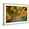 Marmont Hill 'Nature's Flora' by Karolis Janulis Framed Photographic Print