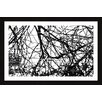 Marmont Hill Branches Entwined Framed Graphic Art