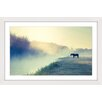 Marmont Hill Horse in the Fog Framed Photographic Print