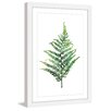Marmont Hill 'Fern 2' by Rachel Byler Framed Painting Print