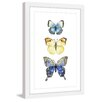 Marmont Hill 'Three Butterflies' by Rachel Byler Framed Painting Print