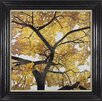 Camelot 'Golden & Silver Leaves II' by Kate Bennett Framed Art Print