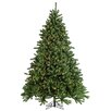 Sterling Inc. 7.5' Green Grand Canyon Spruce Christmas Tree with 1200 Multi Lights with Stand