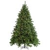Sterling Inc. 9' Green Grand Canyon Spruce Christmas Tree with 1500 Multi Lights with Stand