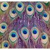 Salty & Sweet Peacock Feathers Graphic Art on Canvas