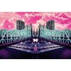 Fluorescent Palace Pink Explosion Graphic Art on Canvas