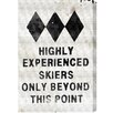 Oliver Gal Experienced Skiers' by Blakely Home Typography on Canvas