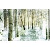 Oliver Gal Vail Birch by Canyon Gallery Photographic Print Wrapped on Canvas