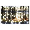 Oliver Gal Birch Land by Canyon Gallery Graphic Art Wrapped on Canvas