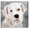 Oliver Gal Love My Labrador Art Prints Wrapped on Canvas
