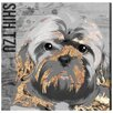 Oliver Gal Love My Shih Tzu Art Prints Wrapped on Canvas