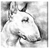 Oliver Gal Bull Terrier by Hatcher and Ethan Graphic Art Wrapped on Canvas