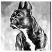 Oliver Gal French Bulldog by Hatcher and Ethan Graphic Art Wrapped on Canvas
