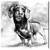 Oliver Gal Dachshund by Hatcher and Ethan Graphic Art Wrapped on Canvas