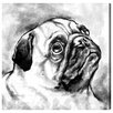 Oliver Gal Pug by Hatcher and Ethan Graphic Art Wrapped on Canvas