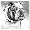 Oliver Gal English Bulldog by Hatcher and Ethan Graphic Art Wrapped on Canvas