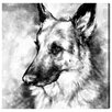 Oliver Gal German Shepherd by Hatcher and Ethan Graphic Art Wrapped on Canvas