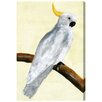 Oliver Gal 'Elegant Cockatoo' Graphic Art Wrapped on Canvas