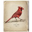 Oliver Gal 'Cardinal' Graphic Art Wrapped on Canvas