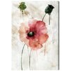 Oliver Gal 'Poppy Study I' by Art Remedy Art Print Wrapped on Canvas