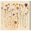 Oliver Gal 'Vintage Flowers' Graphic Art Wrapped on Canvas