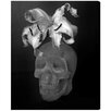 Oliver Gal 'Skull Renaissance' by Ekaterina Juskowski Graphic Art Wrapped on Canvas