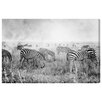 Oliver Gal 'BW Stripes' Photographic Print on Wrapped Canvas