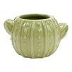 Quintanar Cactus Succulent Table Top Ceramic Pot Planter - Hallmark Home & Gifts Planters