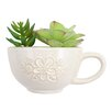 Quist Tea Cup Hanging Ceramic Wall Planter - Hallmark Home & Gifts Planters