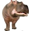 Advanced Graphics Hippopotamus Cardboard Stand-Up