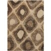 Chandra Rugs Dublin Brown Area Rug