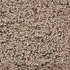 Chandra Rugs Bella Textured Contemporary Shag Brown Area Rug