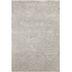 Chandra Rugs Opel Textured Solid Gray Area Rug
