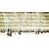 """Parvez Taj Leinwandbild """"Aspen Forest"""", Kunstdruck"""