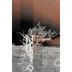 Parvez Taj Crusted Coral Graphic Art Wrapped on Canvas