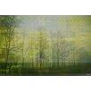 Parvez Taj Leinwandbild Green Misty Haze, Grafikdruck