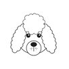 Star Editions Animaru Poodle Graphic Art