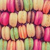 Benjamin Parker Galleries Macaroons Photographic Print on Glass