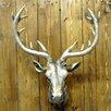 Geko Products Metal Deer Head Wall Décor