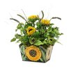 Dalmarko Designs Dalmarko Designs Sunflower Mix in Planter