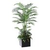 Dalmarko Designs Lush Areca Palm Floor Plant in Planter