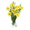 Dalmarko Designs Lillies in Glass