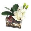 Dalmarko Designs Orchids and Succulent in Glass