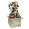 Dalmarko Designs Succulent Floor Plant in Planter
