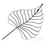 My Maison Small Simple Palm Leaf Wall Art