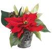 Silk Flower Depot Velvet Poinsettia & Protea Desk Top Plant in Pot